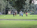Volleyball Neutral Ground Mid-City NOLA.jpg