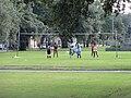 Volleyball Neutral Ground Mid-City NOLA.jpg