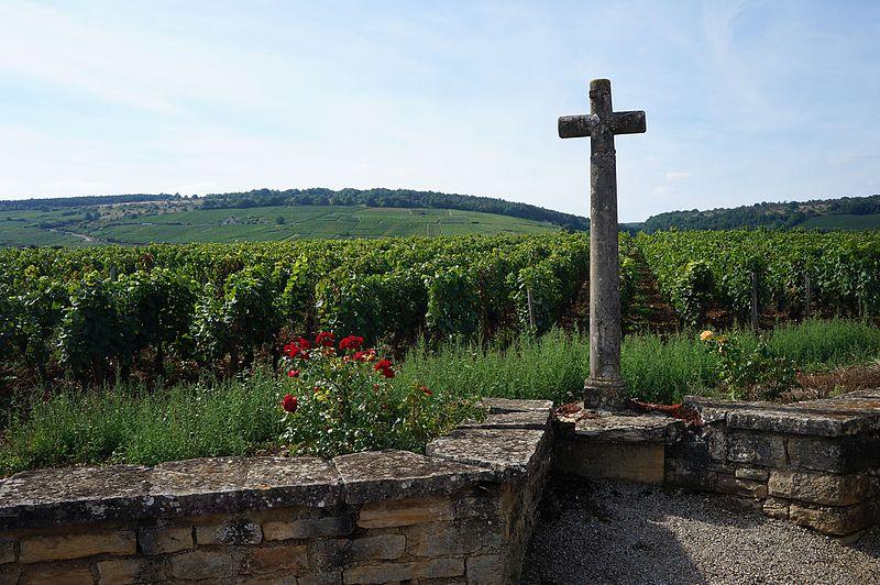 File:Vosne-Romanée, Domaine de la Romanée-Conti (1).JPG