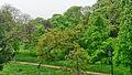 Vue sur le bois de la Chaussée de l'Étang, Saint-Mandé, 94160, France.jpg