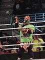 WWE Smackdown IMG 0993 (24007743949).jpg