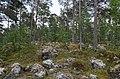 Walking trail, Inari, Finland (15) (36637585736).jpg