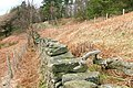 Wall, Broughton Bank - geograph.org.uk - 712653.jpg