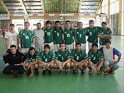 Club de Deportes Santiago Wanderers - Wikipedia, la enciclopedia libre
