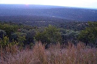 Bushveld Sub-tropical woodland ecoregion of Southern Africa