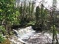Waterfalls on Rookhope Burn (2) - geograph.org.uk - 728925.jpg
