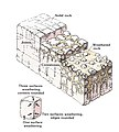 Weathering of joint blocks and stages in the formation of corestones.jpg