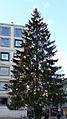 Weihnachtsbaum in Stuttgart 2.JPG