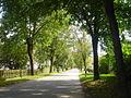 Weissmann Balve Avenue.jpg
