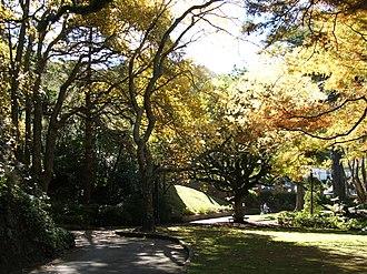 Wellington Botanic Garden - Image: Well Bot Gardenpath
