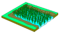 Wetlands Paddy Field Illustration.png