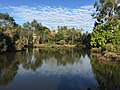 Wetlands at Sherwood Arboretum 02.JPG