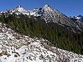 Whistler Mountain 28027.JPG