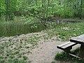 Whitwell Wood - Pond off Half Moon Drive - geograph.org.uk - 790611.jpg