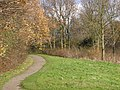 Wilhelminapark - Rijswijk - 2009 - panoramio (4).jpg