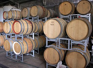 Winery - Wine barrels