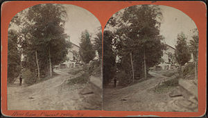 Pleasant Valley (town), New York - Stereoscope of Pleasant Valley