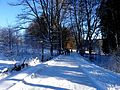 Winter 2017 Kolweder Bachtal.JPG