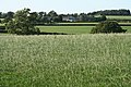 Witheridge, towards Broadridge Farm - geograph.org.uk - 236372.jpg