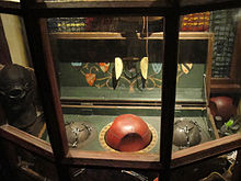 Wizarding World of Harry Potter - Quidditch gear (5014156072).jpg