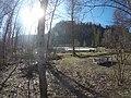 Wolfsee (Bavaria).jpg
