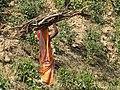 Woman Carrying Firewood - Zareen Tea Estate - Near Srimangal - Sylhet Division - Bangladesh - 02 (12948193953).jpg