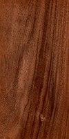 Wood juglans regia.jpg