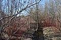 Woody creek 3 (41813287461).jpg