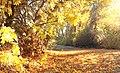 Yakima Greenway - panoramio (35).jpg