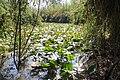 Yarkon Springs Afek (22).jpg