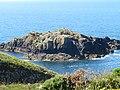 Ynys Penpleidian (island), Bae Caerfai bay, S of Tydddewi (St David's), Sir Benfro (Pembrokeshire), Cymru (Wales) 02.jpg