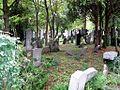 Zentralfriedhof Wien JW 003.jpg