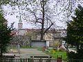 Ziębice - panoramio (8).jpg