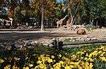Zoo de Lisboa by Juntas 49.jpg