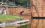 Zoo de Lisboa by Juntas 85.jpg