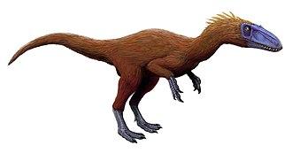 Coelurosauria - Image: Zuolong salleei (Flipped)