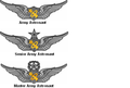 File:Army Astronaut Badges.png - Wikimedia Commons