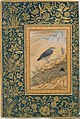 """Diving Dipper and Other Birds"", Folio from the Shah Jahan Album MET DT4810.jpg"