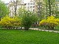 Александровский парк02.jpg