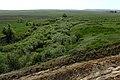 Вид с Белой горы в западном направлении - panoramio.jpg