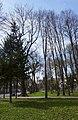 Вінниця, центральний міський парк.jpg