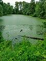 В.Новгород, пос.Волховский, Архиерейская мыза, парк, пруд.jpg