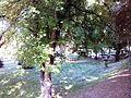 Градски парк 34.jpg