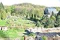 День відкритих дверей в ботанічному саду по вул. Черемшини,44 17.04.2016.jpg