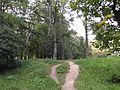 Зеленая акварель - panoramio.jpg