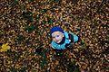 Золотая осень - panoramio (15).jpg