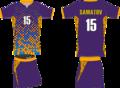 Мужская игровая форма волейбольной команды Алтай-2.png