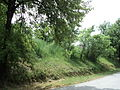 Парк шума Гази Баба во мај (31).JPG