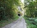 Посебни (геолошки) резерват природе Говјештица, Бања Стијена и Кањон Праче 14.jpg