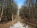 Пулковская обсерватория. Меридианная дорожка01.jpg